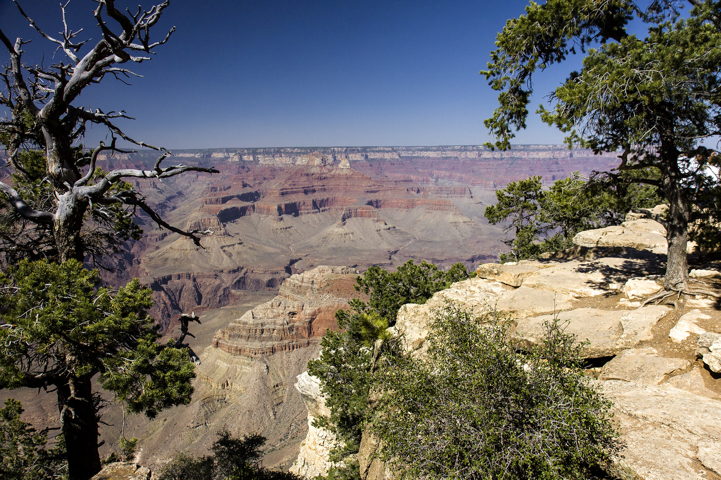voyages-grand-canyon-usa-ouest-2012-marie-colette-becker-08