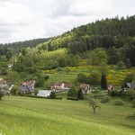 naturaliste-alsace-bossue-printemps-2015-marie-colette-becker-04