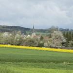 naturaliste-printemps-domfessel-2016-marie-colette-becker24