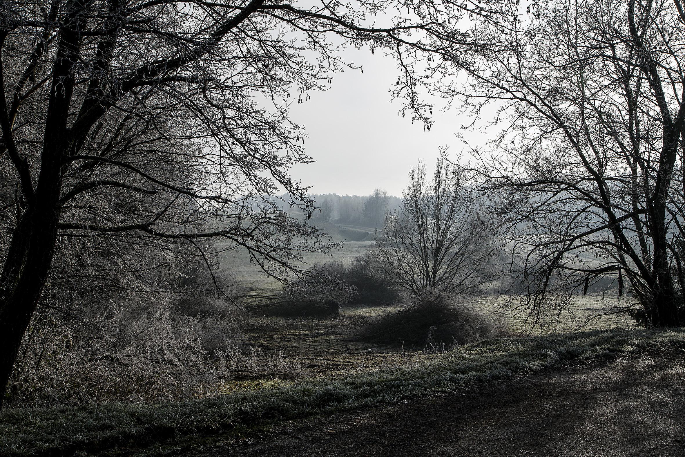 nature-givre-rech-2015-marie-colette-becker-02