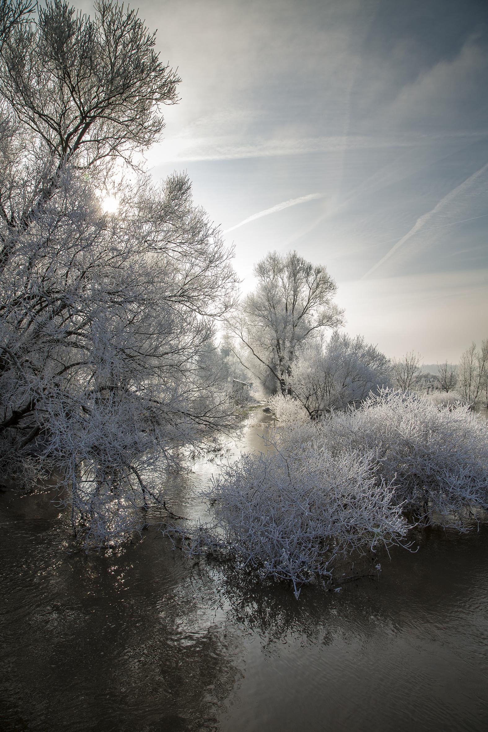 nature-givre-rech-2015-marie-colette-becker-05
