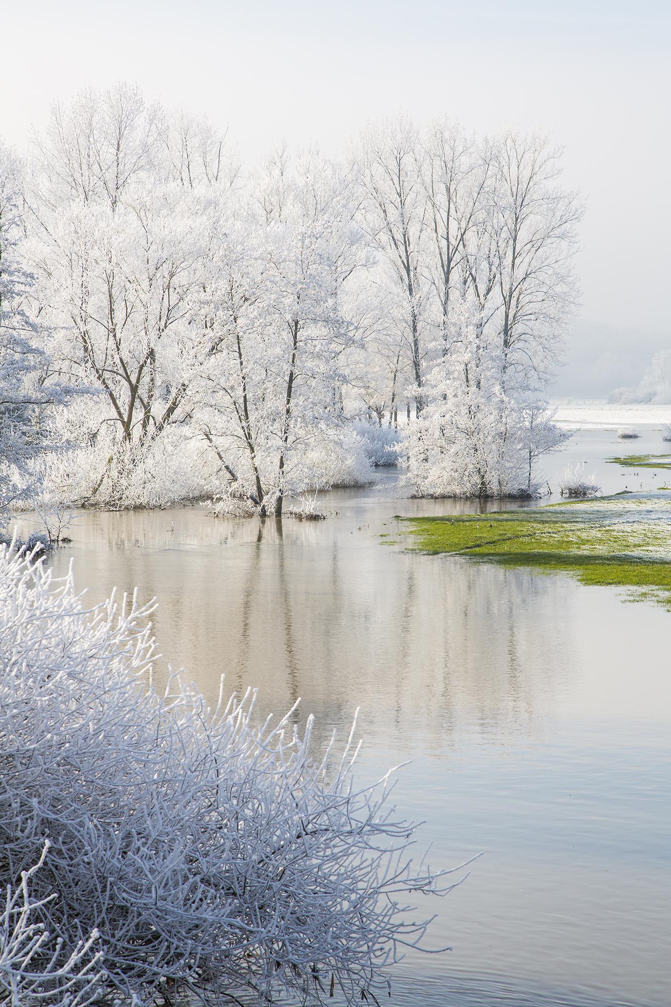 nature-givre-rech-2015-marie-colette-becker-08