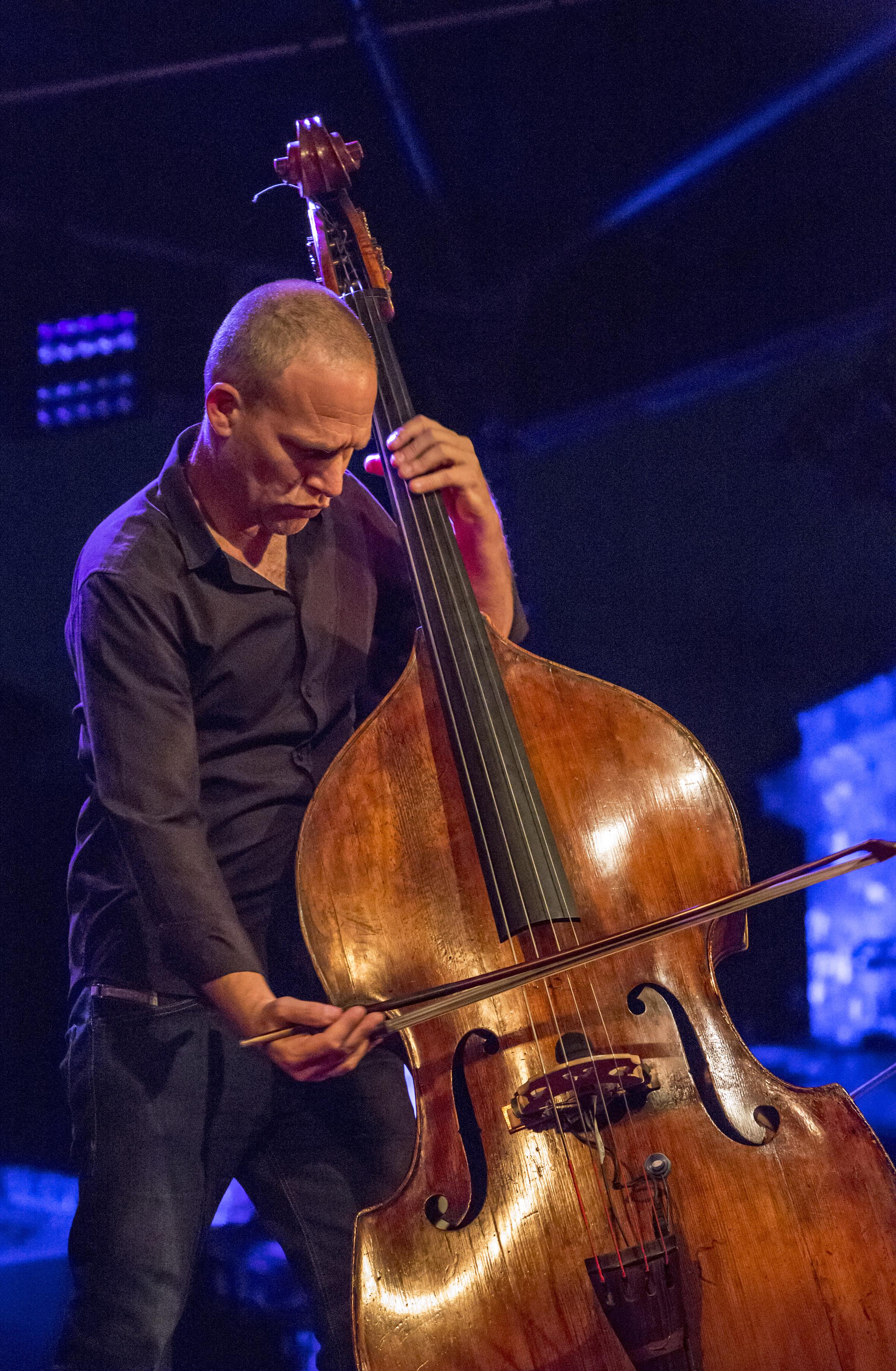 portraits-avishai-cohen-trio-festival-au gr+¿s-du jazz-la-petite-pierre-2014-marie-colette-becker-15