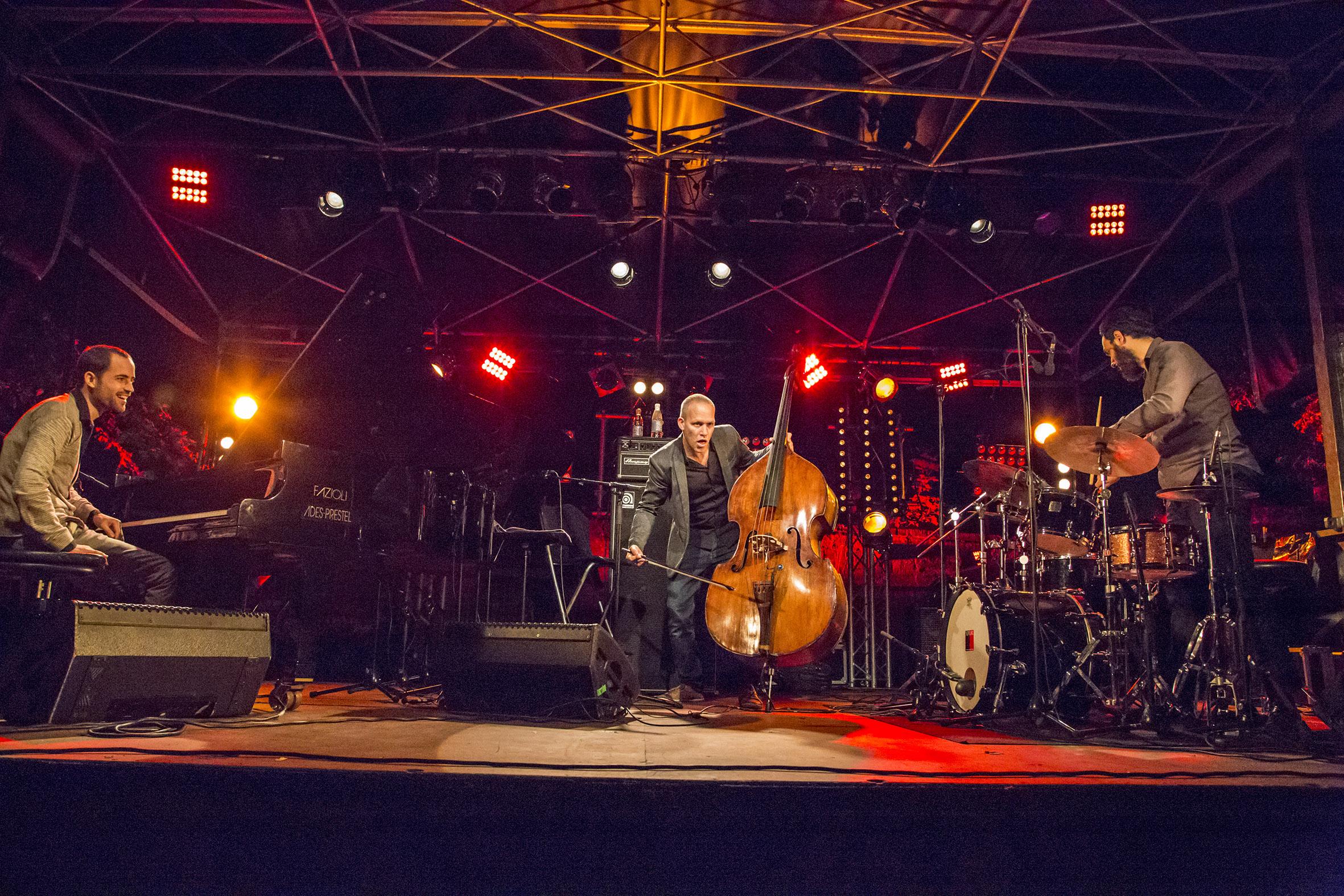 portraits-avishai-cohen-trio-festival-au gr+¿s-du jazz-la-petite-pierre-2014-marie-colette-becker-23