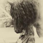 sarre-contes-kirchberg-2014-marie-colette-becker-02